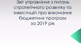 Vit of the Department for Strategic Development and Investment on the implementation of budget programs for 2019