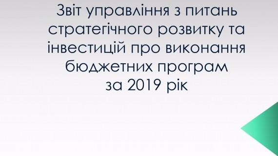 Звіт управління з питань стратегічного розвитку та інвестицій про виконання бюджетних програм за 2019 рік