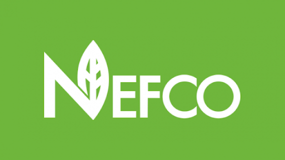 Progress of the NEFCO-1 project
