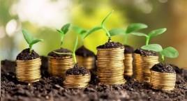 Прямі іноземні інвестиції в місто Рівне у 2019 році